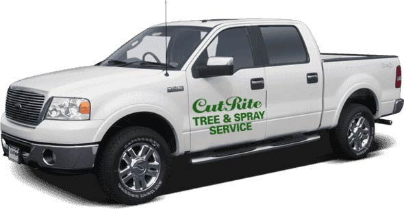 photo of truck with Cut-Rite logo